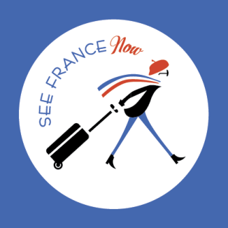 logo_final_SFN_type_Artboard 3